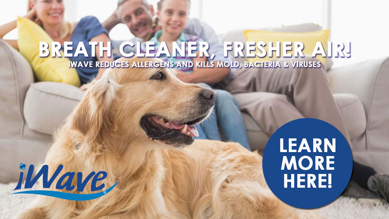 Breath cleaner fresher air with iwave